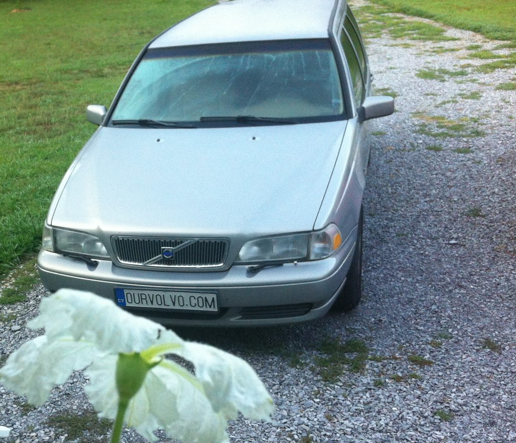 Volvo V70 Smelling  a Flower